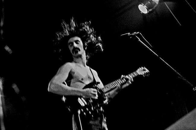 px Frank Zappa in glory original